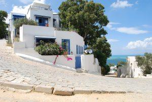 Immobilier -Tunisie